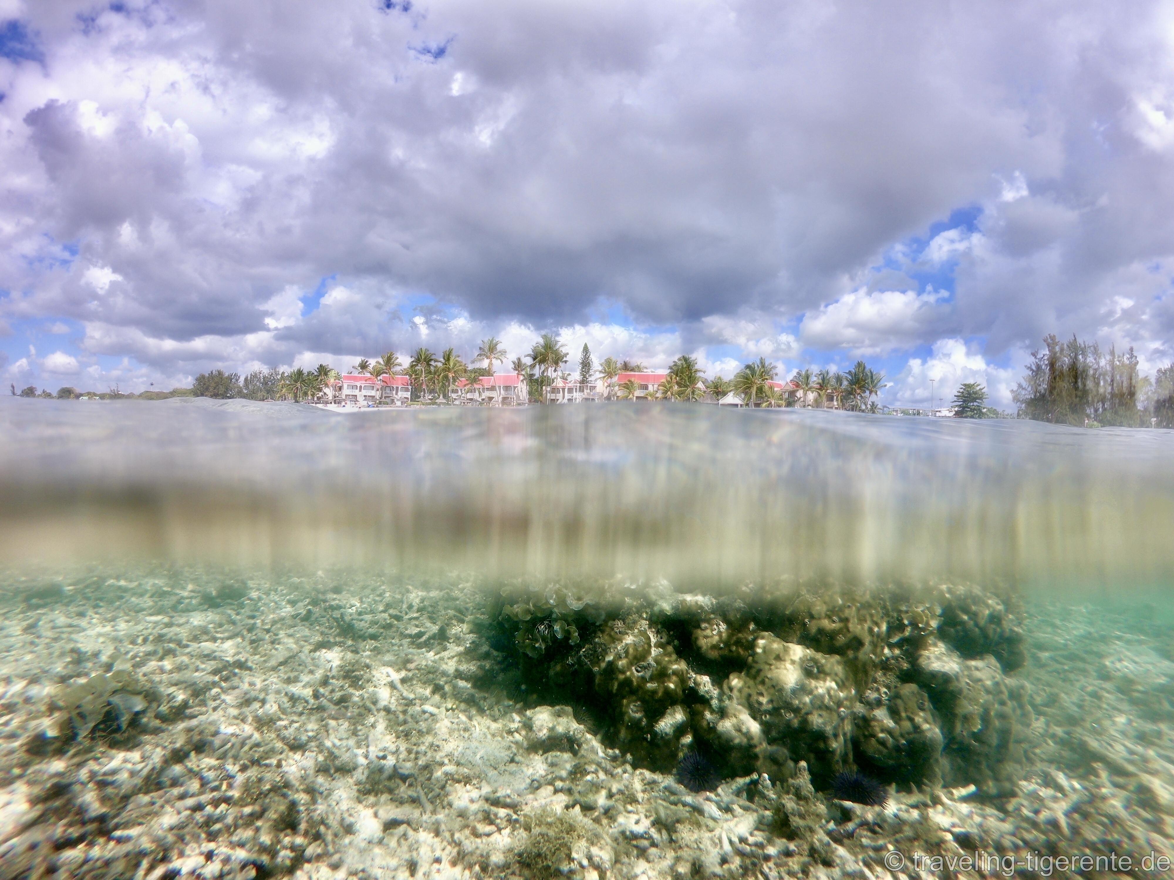 (Was für) ein Tag unter Wasser!