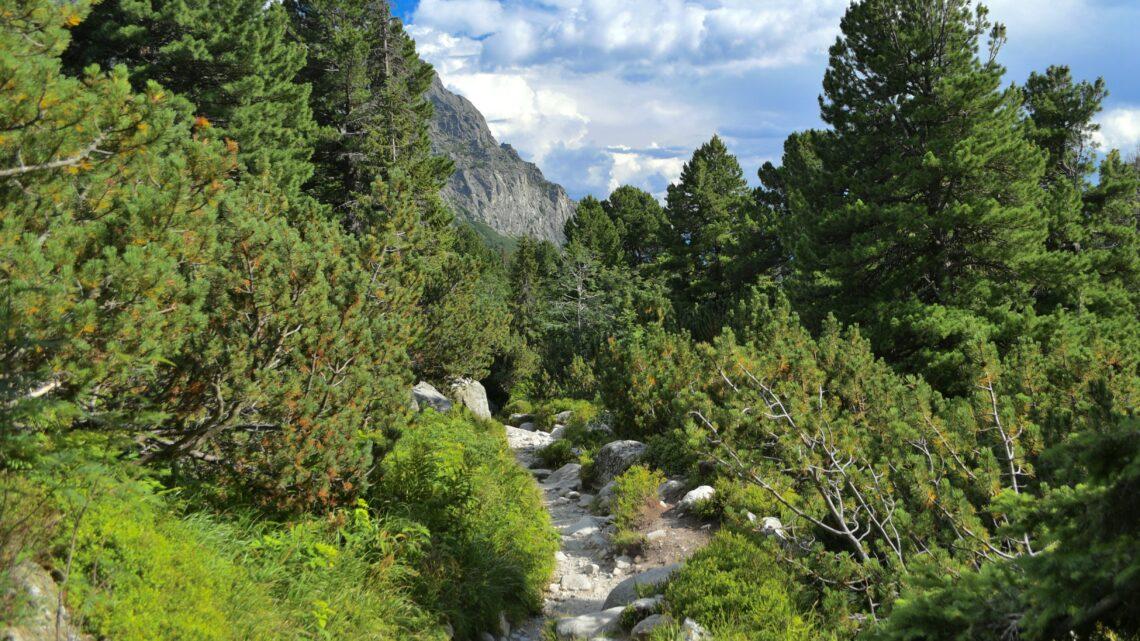 Popradské Pleso – Bergsee in atemberaubender Natur